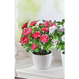 Azaleen-Bouquet rosé