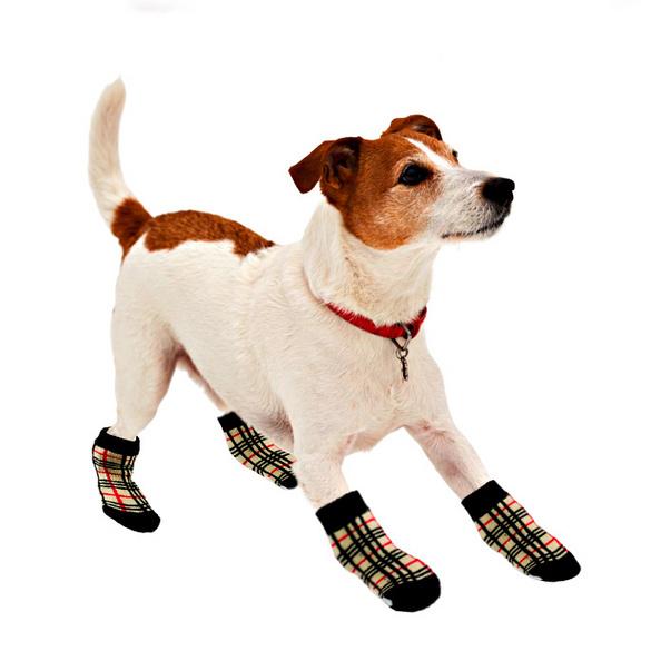 """Hundesöckchen """"Karo"""" klein, 4er-Set"""
