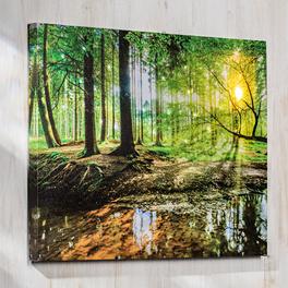 """LED-Bild """"Wald"""""""