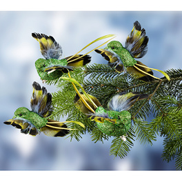 Ziervögel grün, 4er-Set