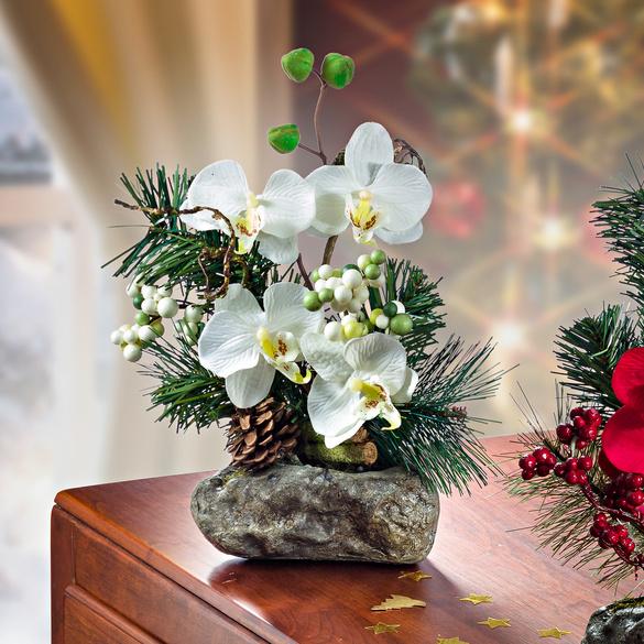Orchideen weiß