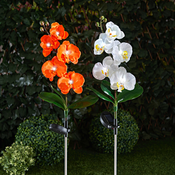 "Solarleuchte ""Orchidee"" orange"