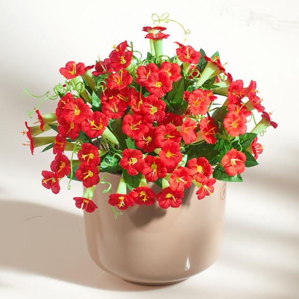 Petunien-Bouquet rot