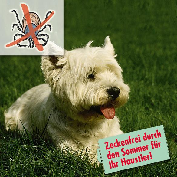 Zecken-Abwehrspray für Tiere