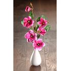 Magnolienzweige rosé, 2er-Set