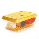 Frischhaltedose für Käse