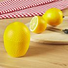 """Frischhalte-Dose """"Zitrone"""""""