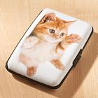 """Kartenbörse """"Katze"""""""