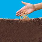 Wunderrasen Saatgut 1 kg