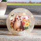 LED-Glaskugel mit Kätzchen