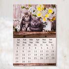 """LED-Kalender """"Kätzchen"""""""