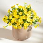 Petunien-Bouquet gelb