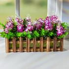 Holzkasten mit Blumen