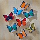 LED-Schmetterlinge