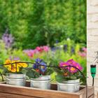 Pflanzen-Bewässerungssystem